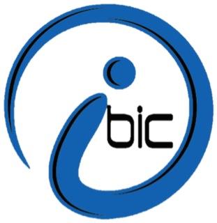BIC logo 3